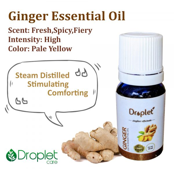 benefits and properties of ginger essential oil