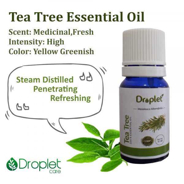benefits of tea tree essential oil